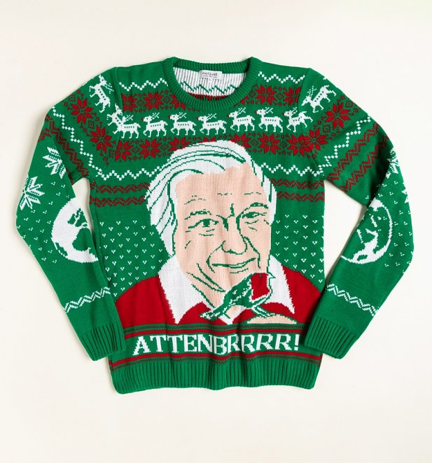 Attenbrrr David Attenborough Knitted Christmas Jumper from Not Just Clothing