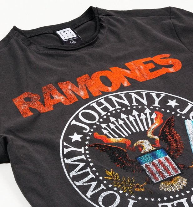 Charcoal The Ramones Vintage Seal T-Shirt from Amplified