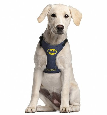 DC Comics Batman Harness for Dogs