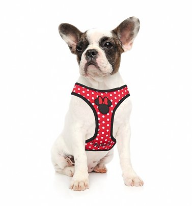 Disney Minnie Mouse Polka Dot Harness for Dogs