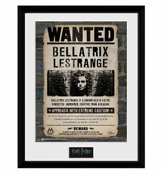 Framed Harry Potter Bellatrix Lestrange 30 x 40cm Collectors Print