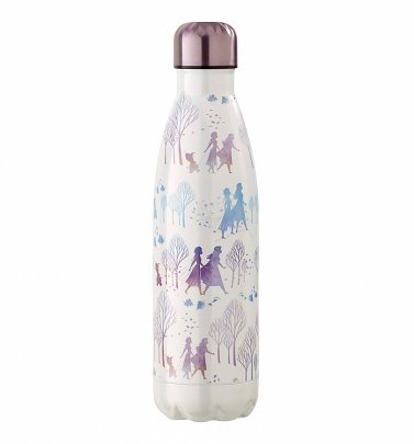 Frozen II Metal Water Bottle from Funko