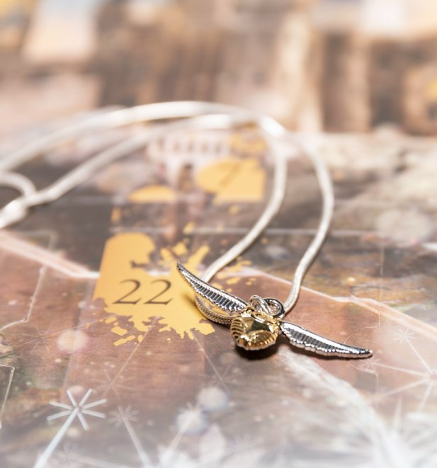 Harry Potter Premium Jewellery Advent Calendar