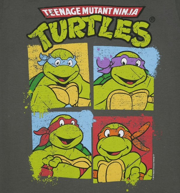 Women's Charcoal Teenage Mutant Ninja Turtles Boyfriend T-Shirt