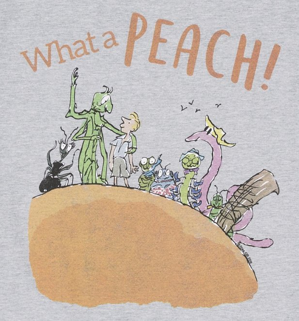 Men's Roald Dahl What A Peach Sport Grey T-Shirt