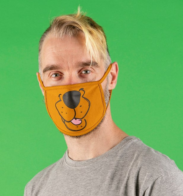 Set of Two Scooby Doo Face Masks