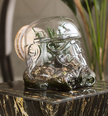 Star Wars Stormtrooper Shaped Glass Terrarium