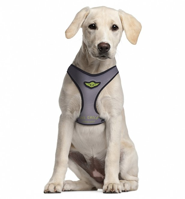 Star Wars The Mandalorian The Child Harness for Dogs