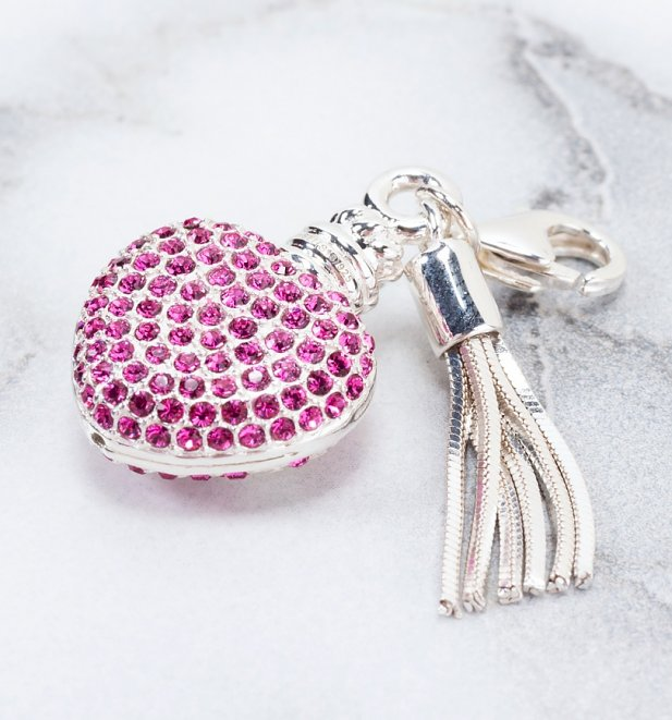 Swarovski Crystal Embellished Harry Potter Love Potion Slider Charm
