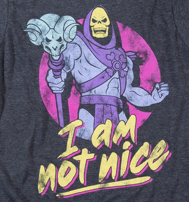 Women's Skeletor I Am Not Nice Charcoal Marl Fitted T-Shirt